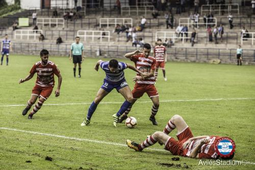 stadium_blimea (25)